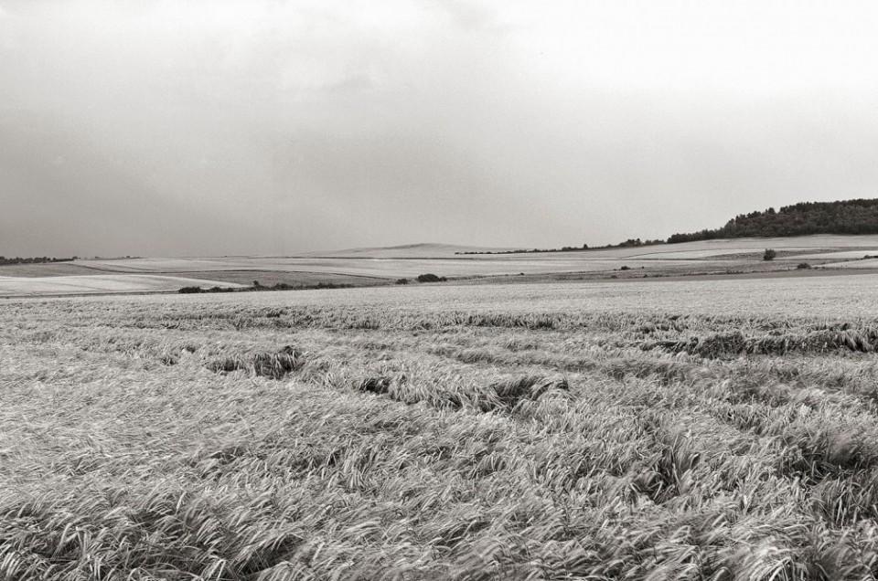 La Main de Massiges, colline surplombant le village de Massiges qui fut un point d'appui des combats en champagne lors de guerre 1914 -1918