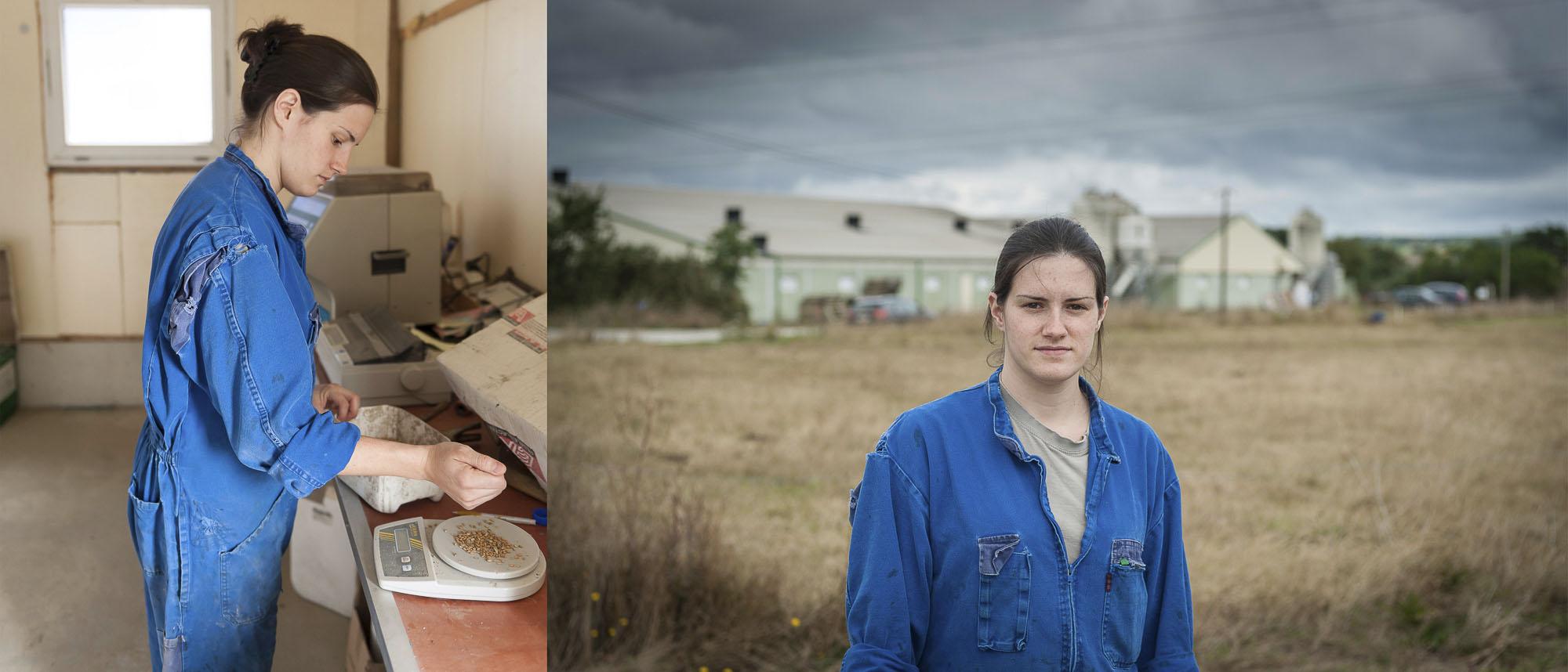 reportage photo salarié agricole dans une elevage de porc en Bretagne